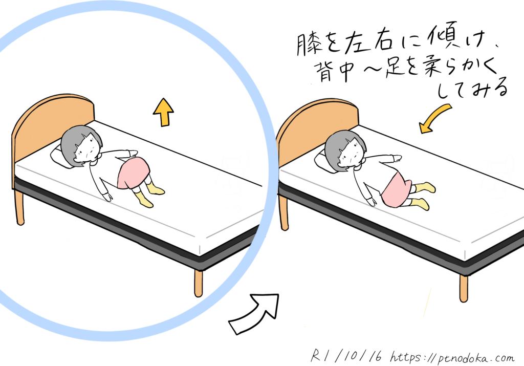 体が固い方のためのストレッチのイラスト(背中〜足)