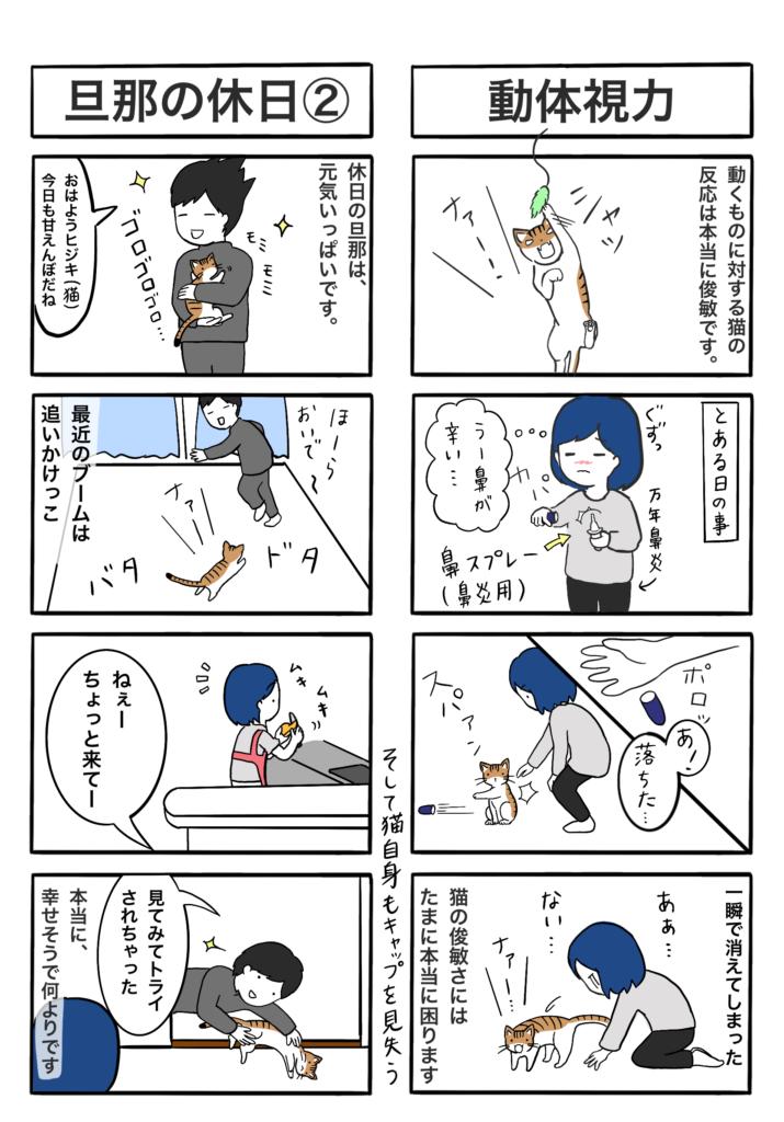 「動体視力」「旦那の休日②(ラグビーの真似でトライする旦那)」の4コマ漫画