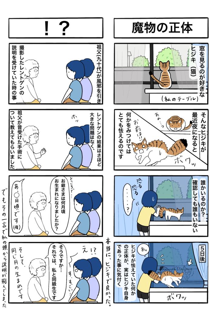 『魔物の正体(自分がガラスに映る姿に驚く猫)』『!?(スーパードクター)』の四コマ漫画