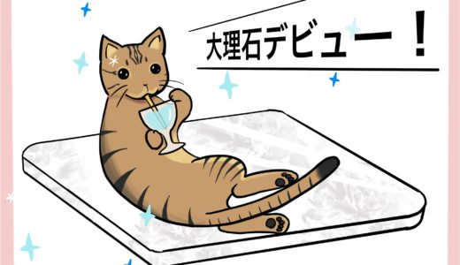 猫のひじき【暑さ対策】のため、大理石デビューした話