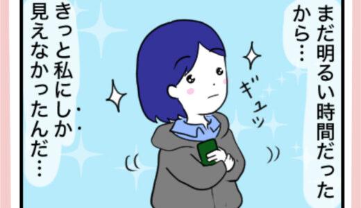 【これはロマンだ】夕方に見た流れ星の正体は?星でも隕石でもなく◯◯◯だった!
